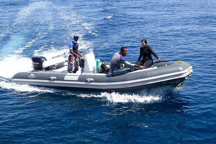 Надуваеми лодки Tiger Marine Dive Master 600